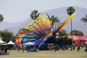 Coachella Butterfly 2015